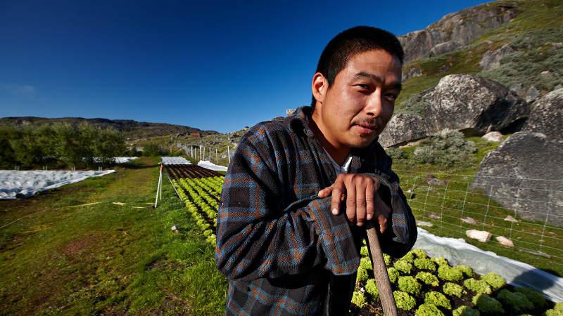 Seznamte se s Grónskem na výstavě v Národním zemědělském muzeu ... 6157f53ddd1