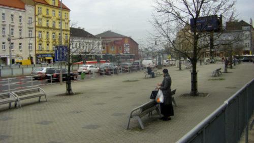 Prostor před libeňským nádražím se zazelená 15 novými pavlovniemi.