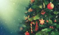 Vánoce bez stromečku? Dnes už je těžko představitelné!