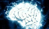 Lidský mozek.