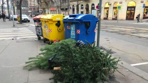 Použité vánoční stromečky plní pražské ulice.